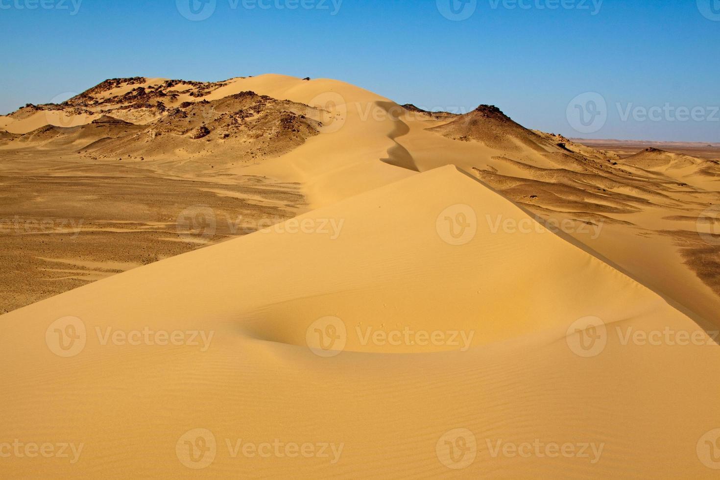 paisagem do deserto do saara, egito foto