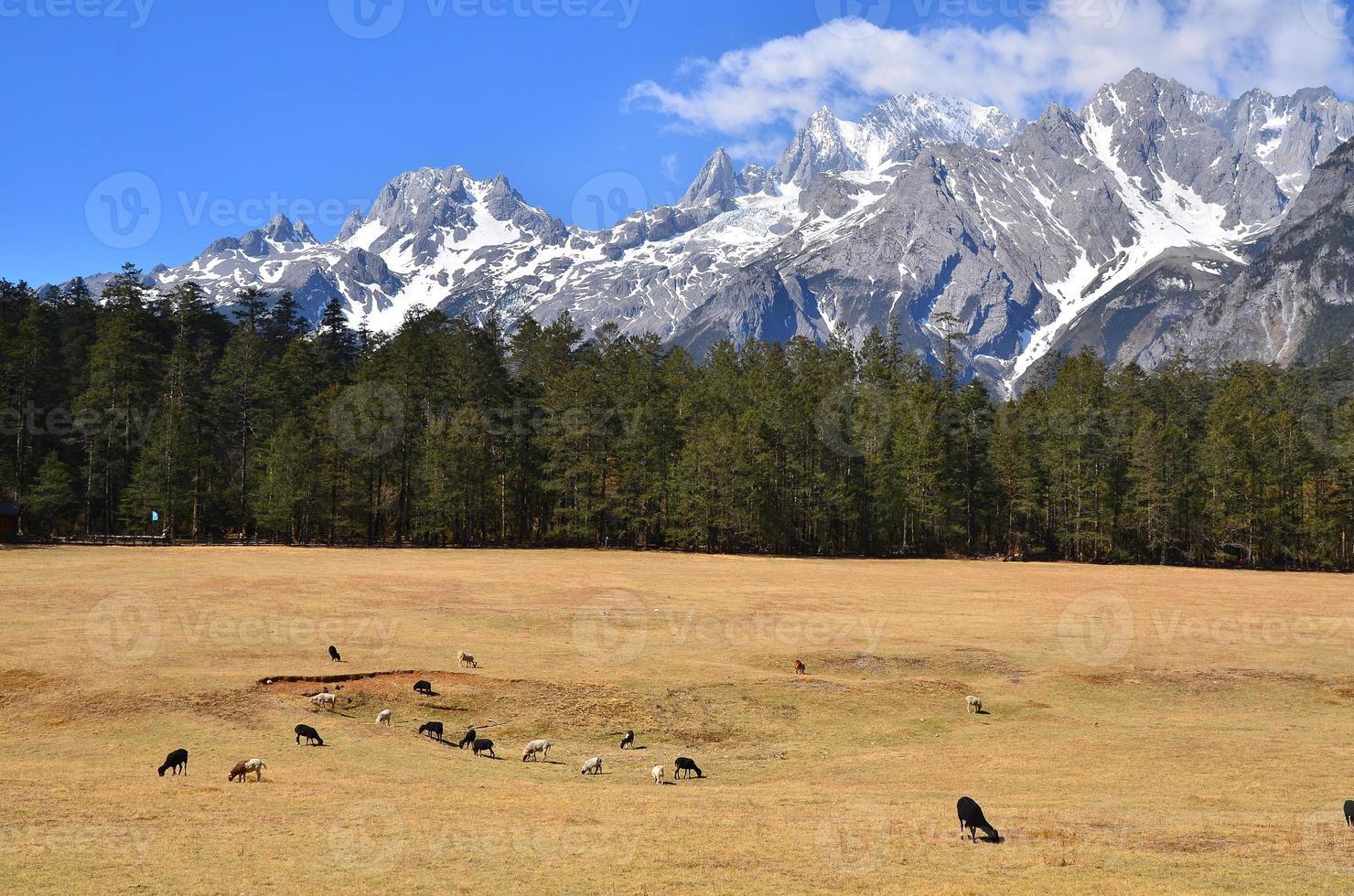paisagem de montanha alpina de neve foto