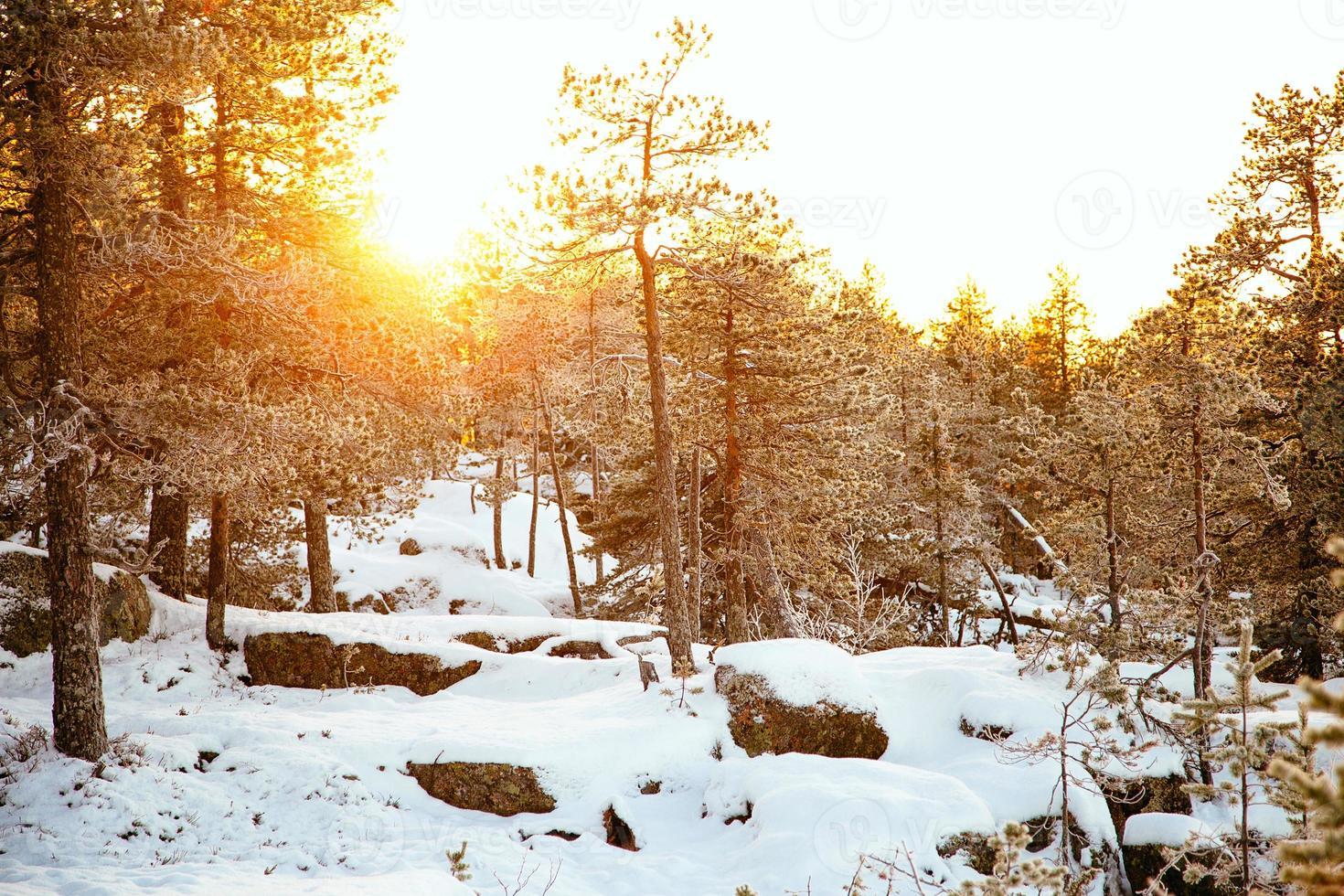 Dia de inverno foto
