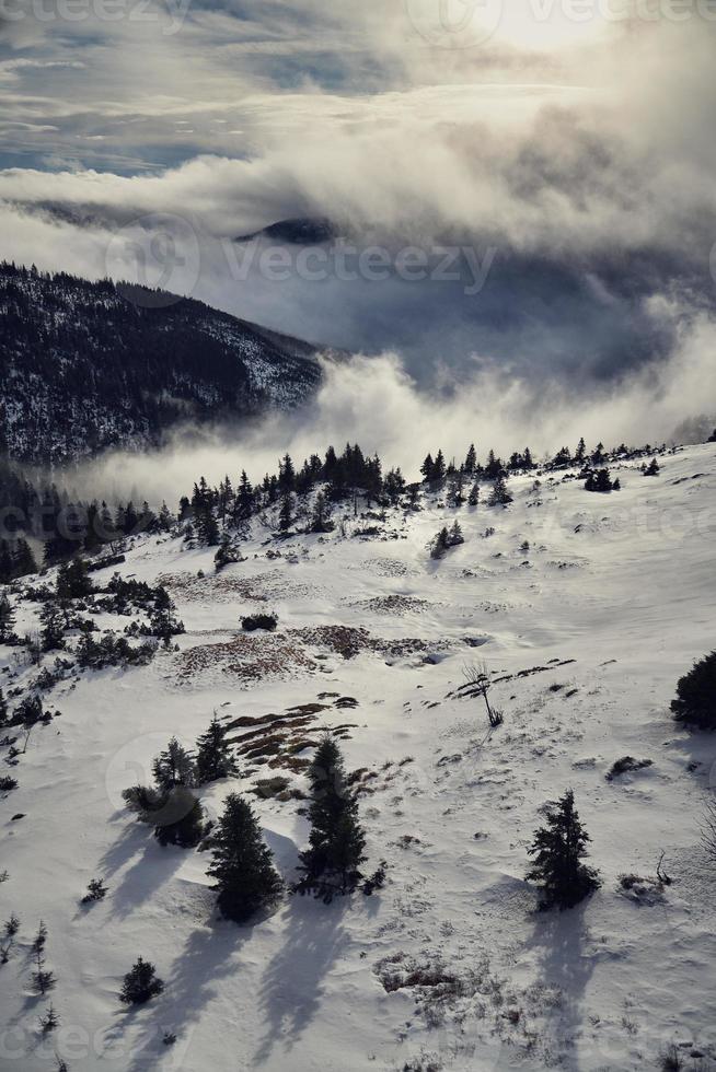 país de inverno foto