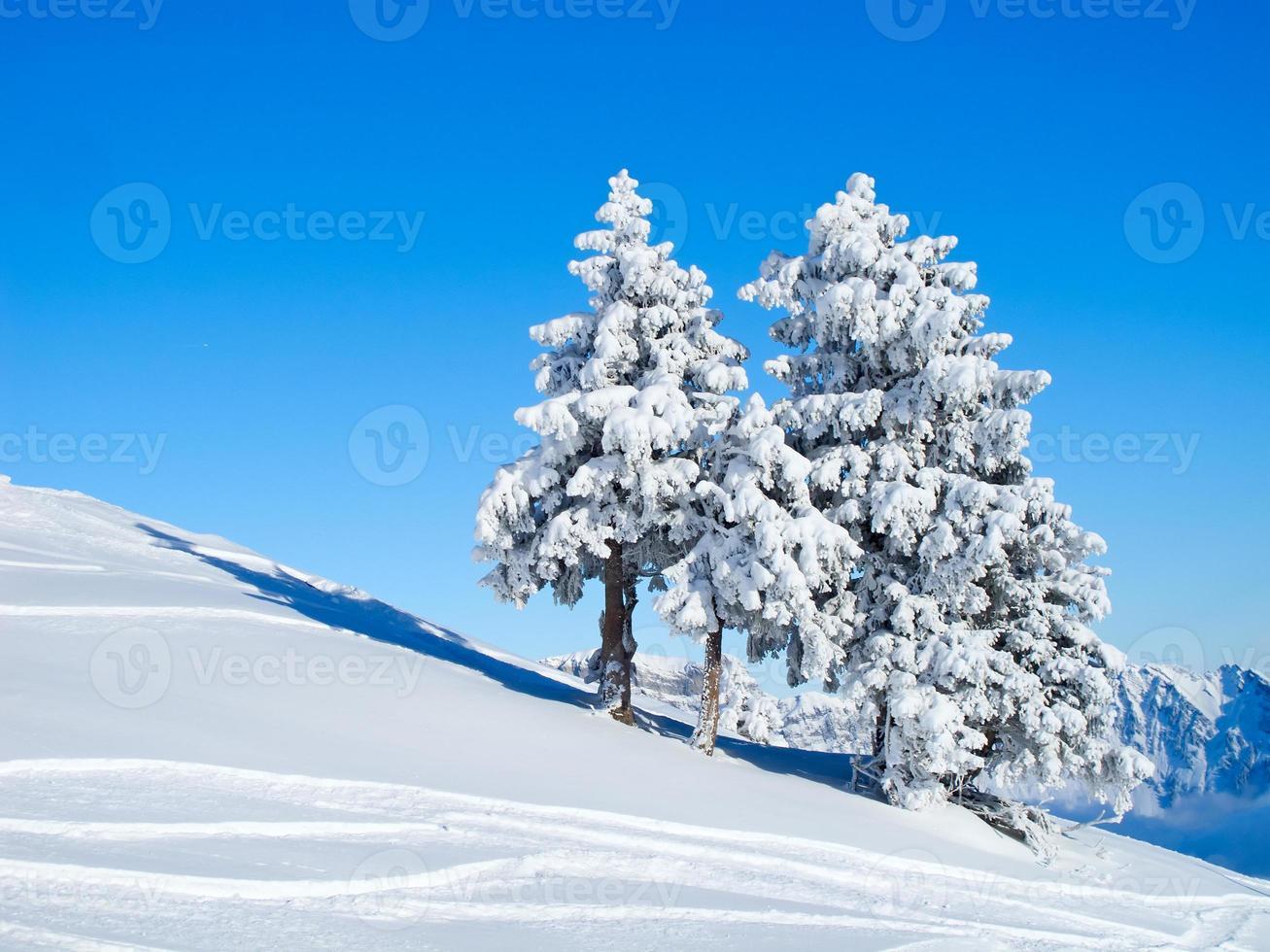inverno nos alpes foto