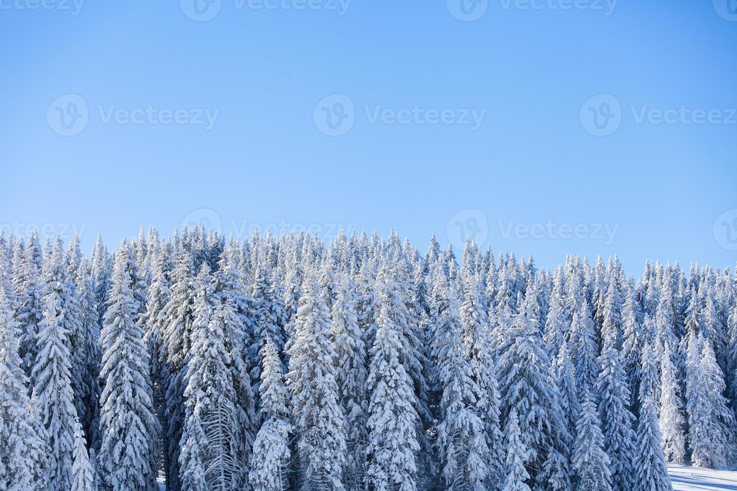 montanha no inverno foto