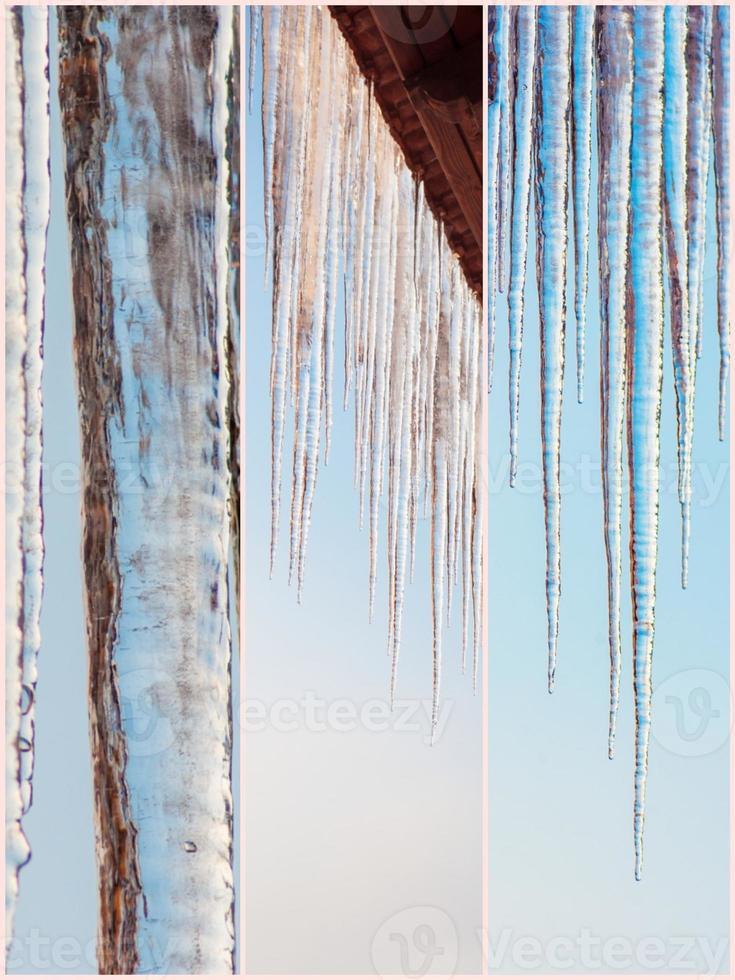 natureza do inverno belas imagens de colagem foto