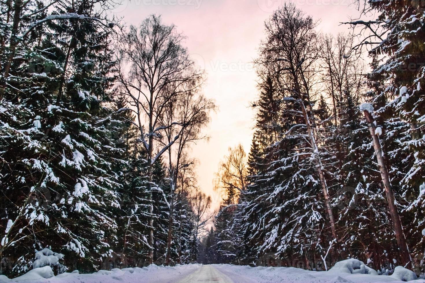 belo pôr do sol de inverno foto