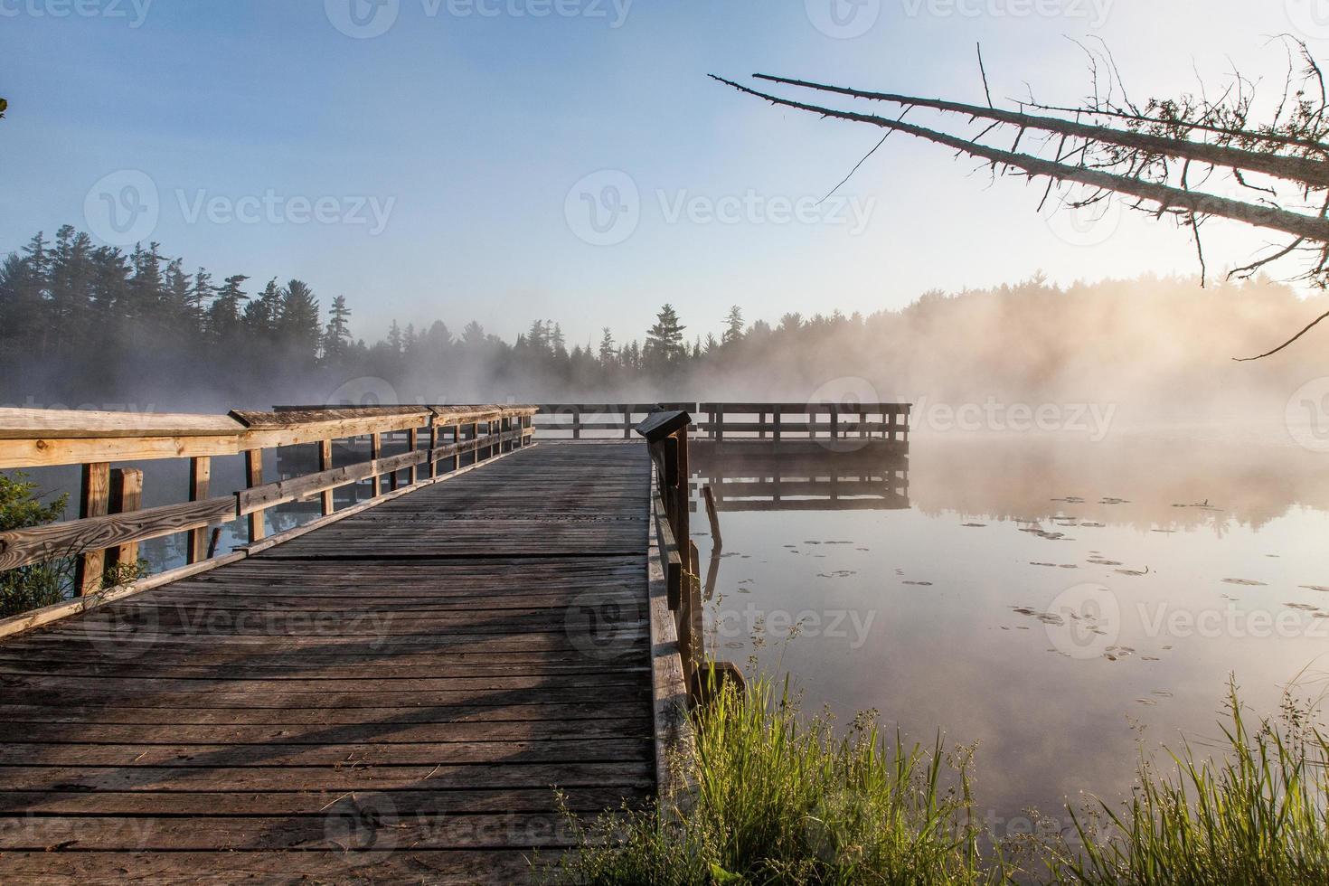 nevoeiro do lago foto