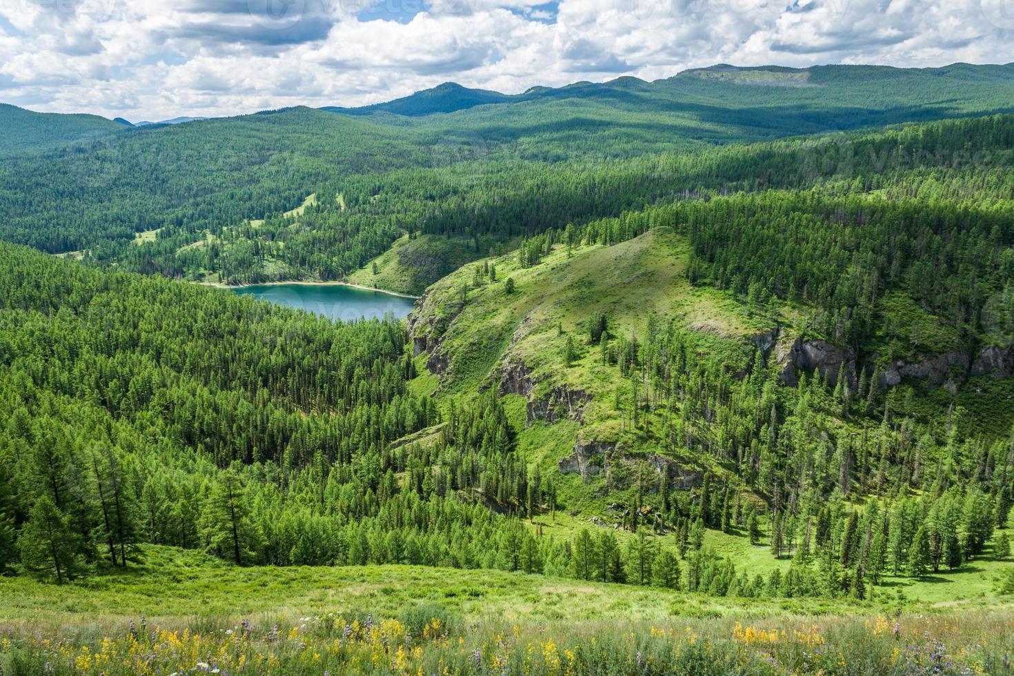 lago da floresta foto