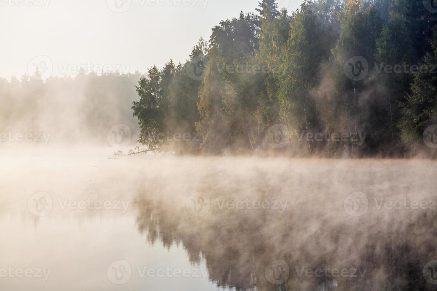 lago nevoento foto
