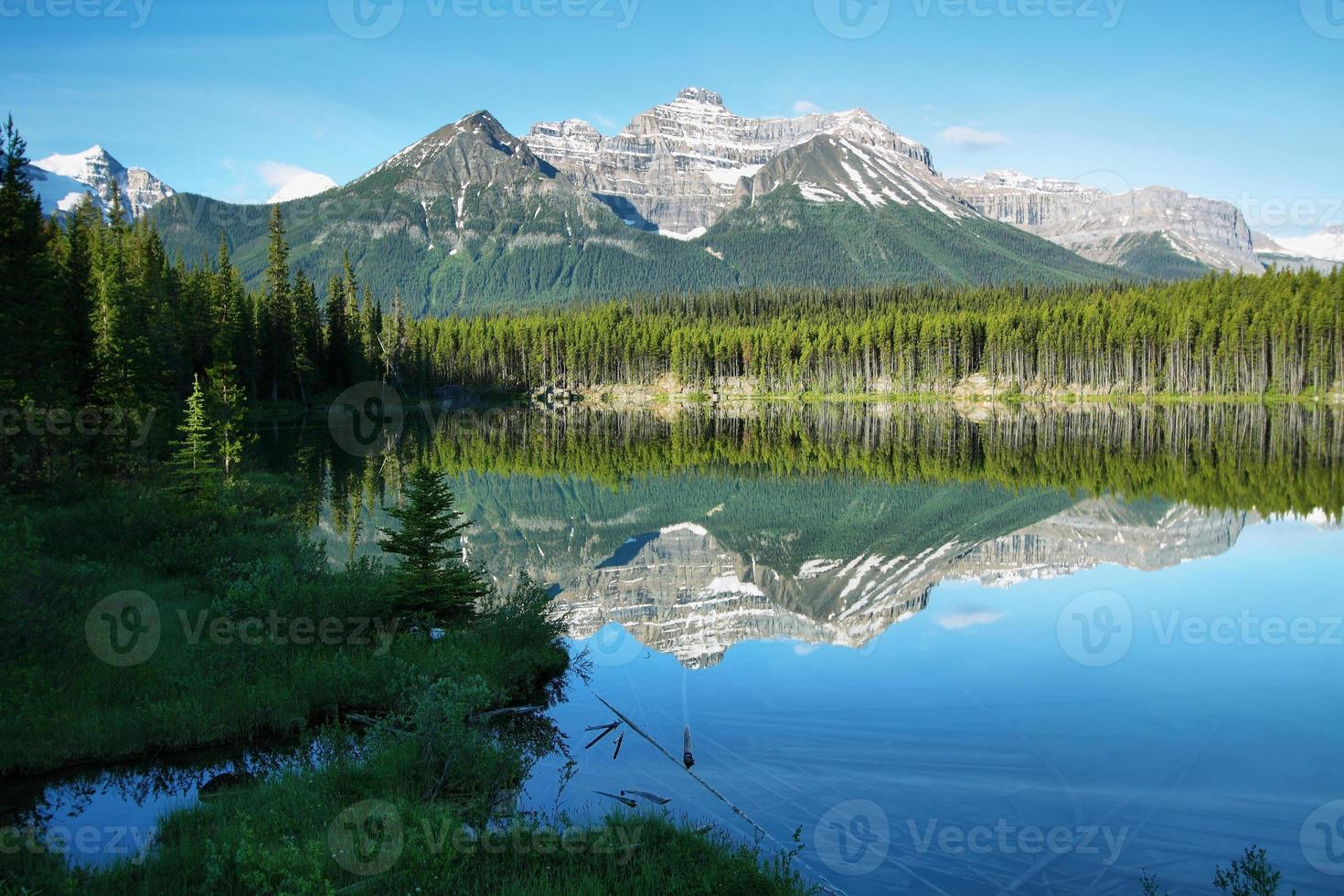 vista para o lago herbert foto