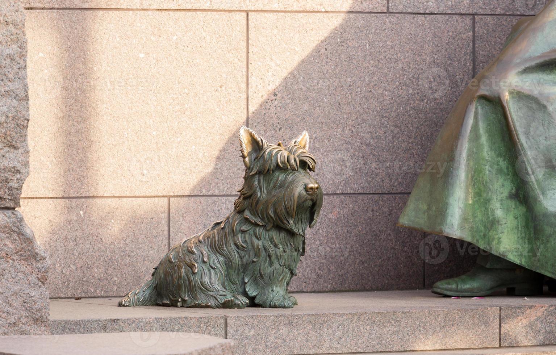 cão de estimação em roosevelt memorial washington dc foto