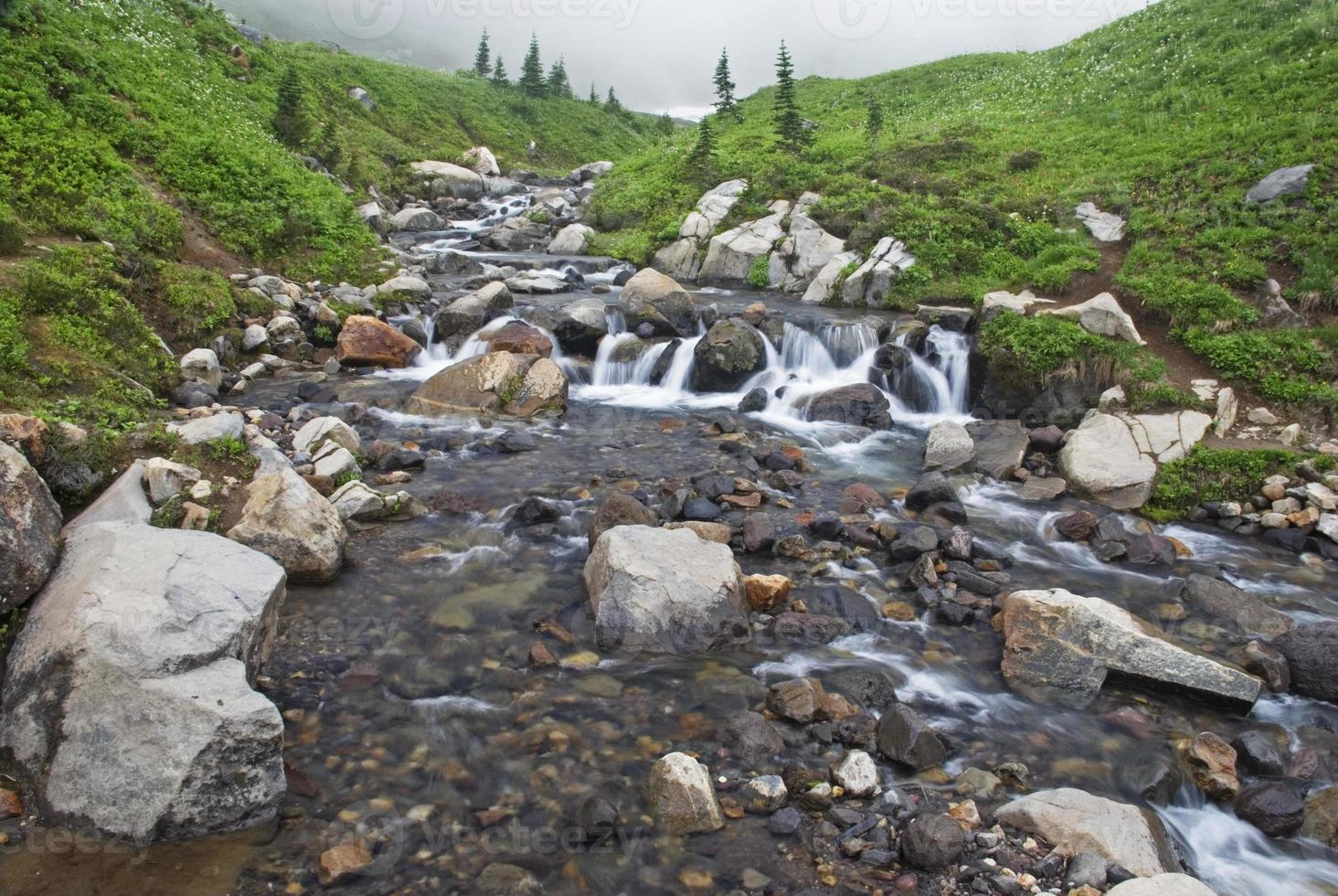 belo riacho foto