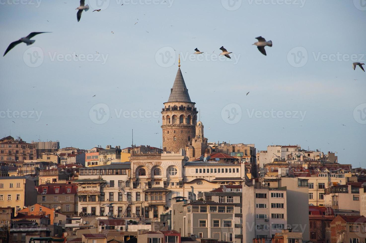 torre galata foto