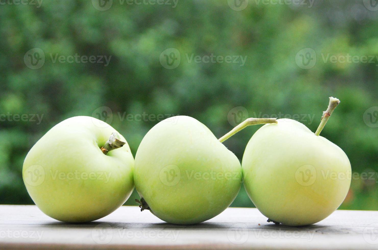 maçãs verdes foto