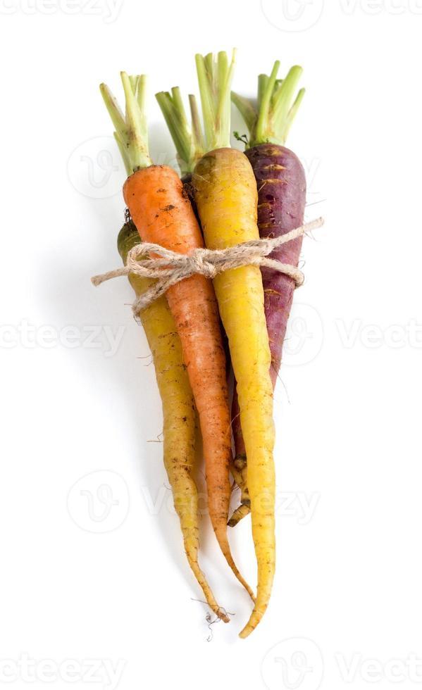 cenouras frescas arco-íris orgânico foto