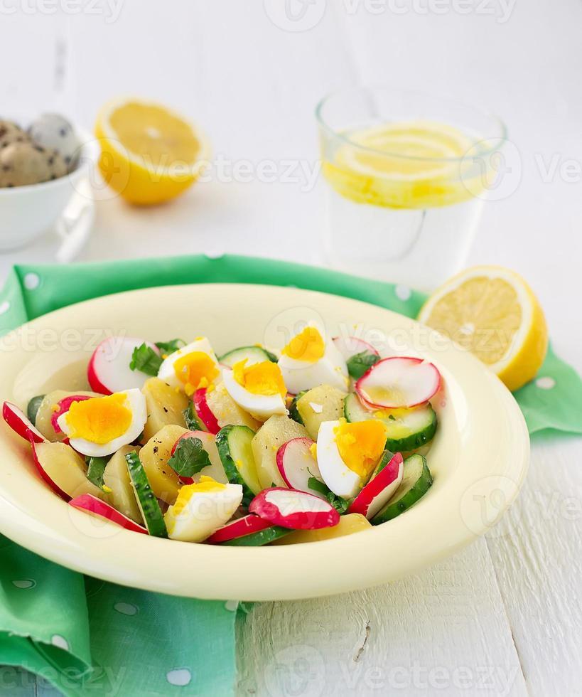 salada com pepino, batatas, rabanetes e ovos foto
