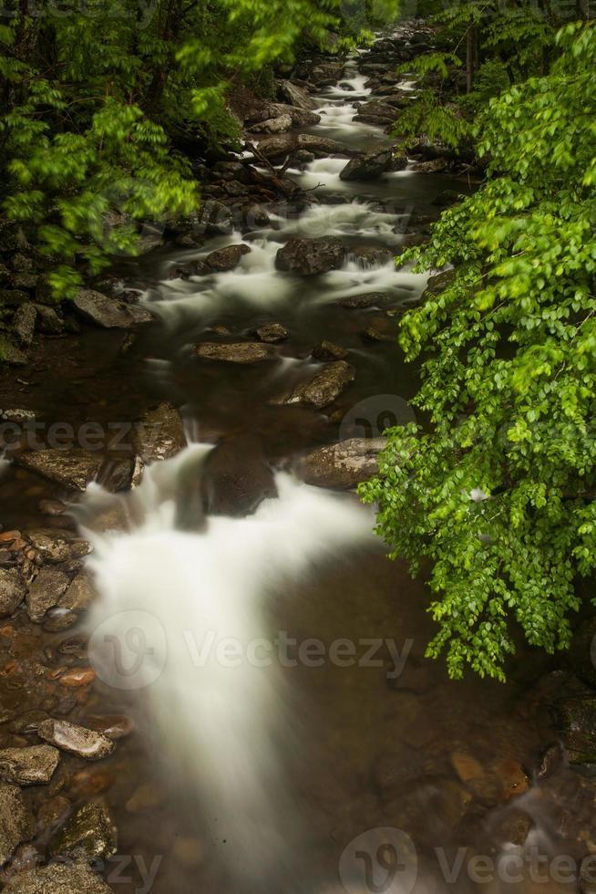 rio foto