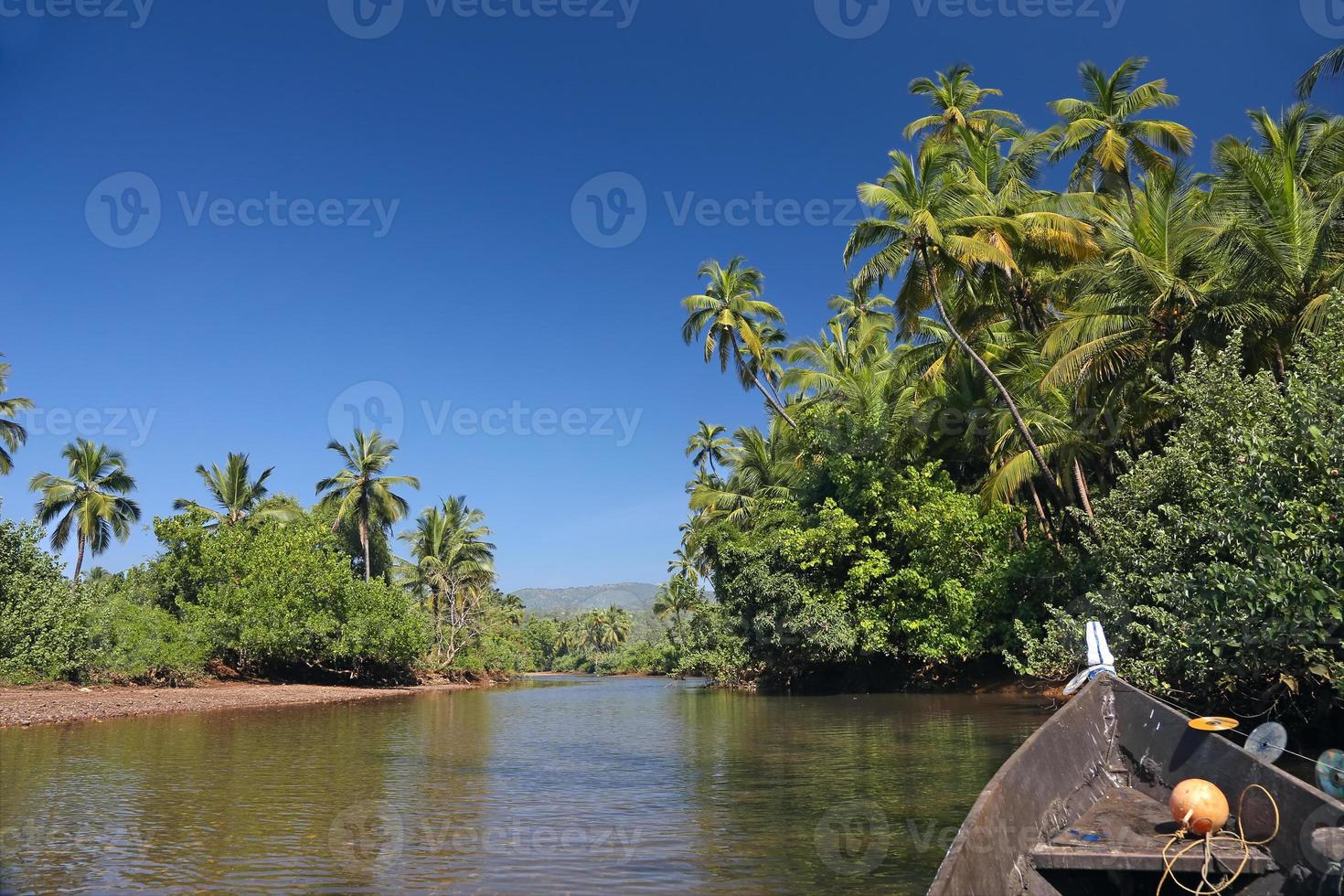 rio tropical foto