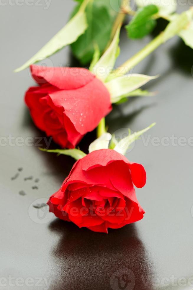 duas rosas vermelhas na vista superior do prato foto
