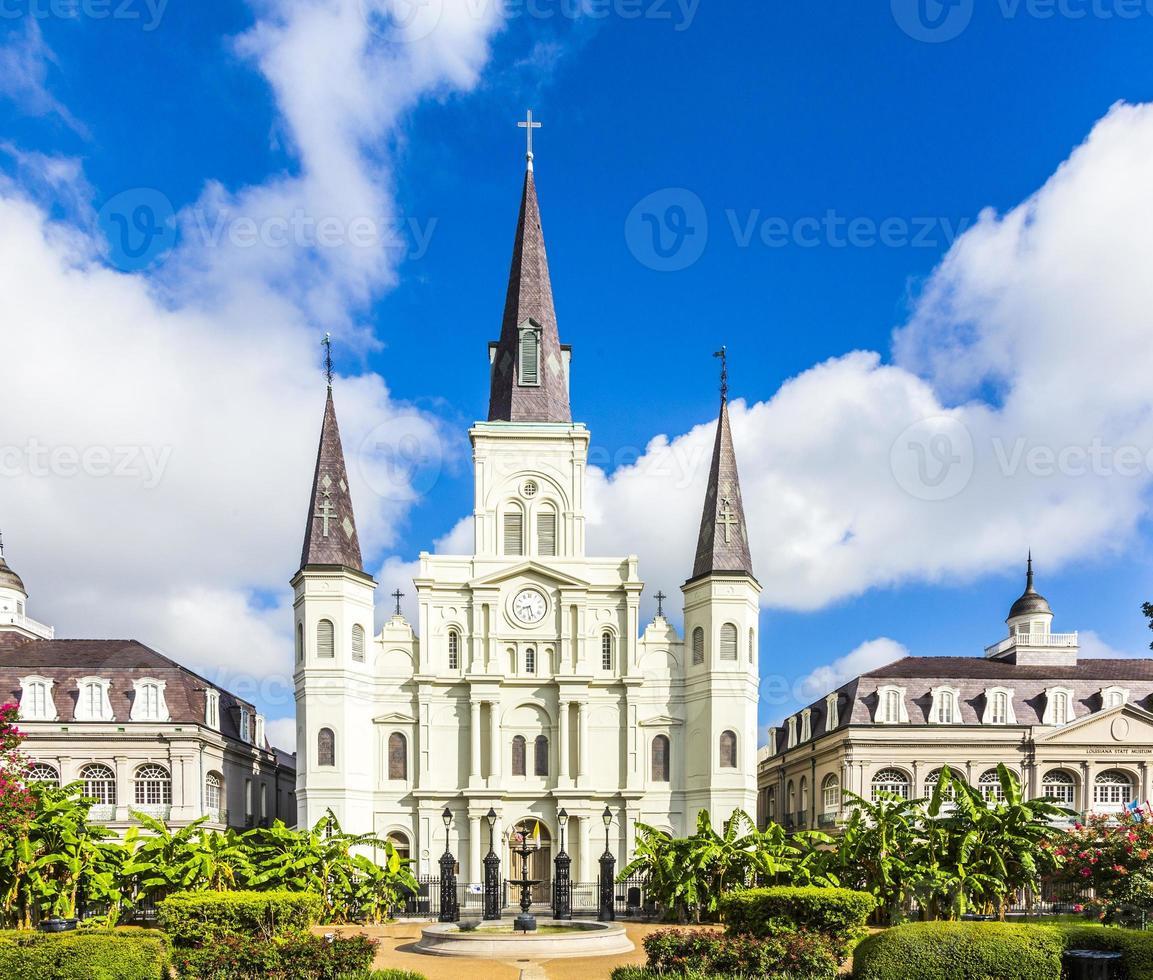 bela catedral de saint louis no bairro francês foto