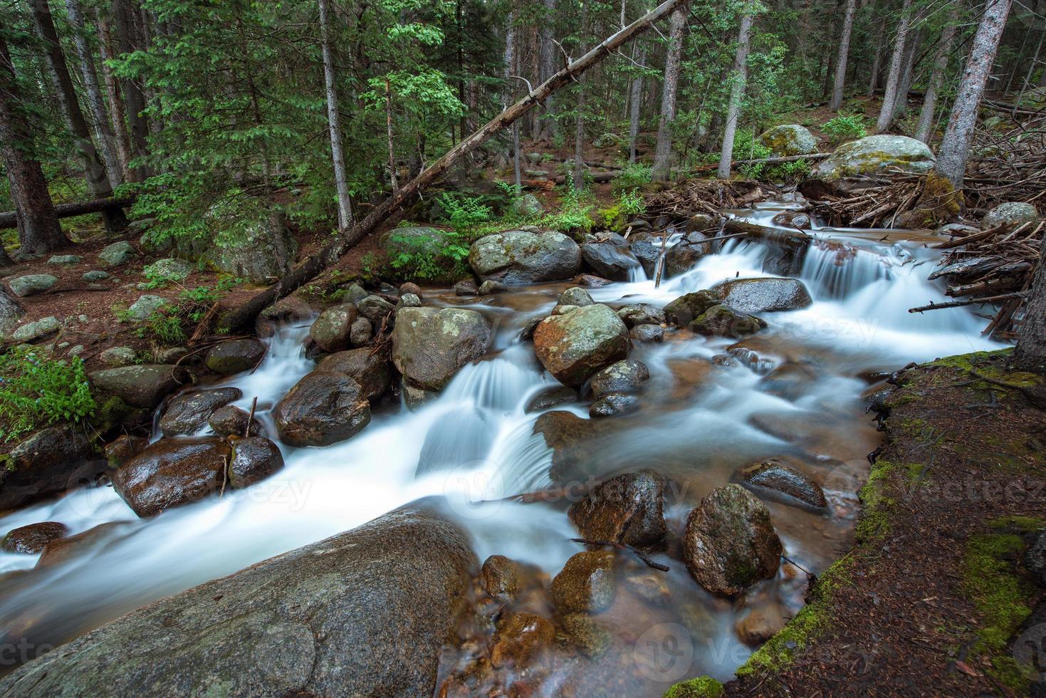 rio profundo da floresta de colorado foto