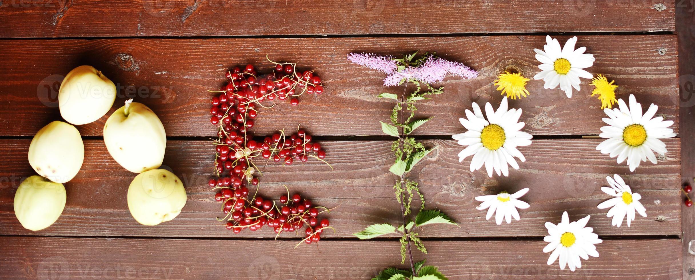 palavra verão plantas de verão foto