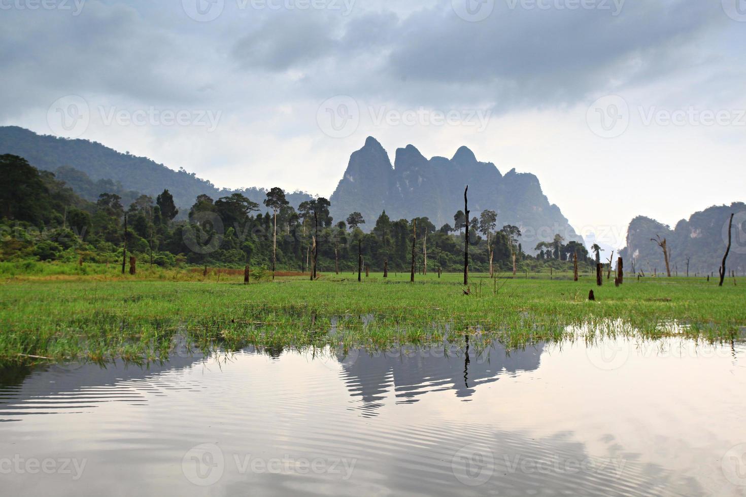parque nacional khao sok, foto