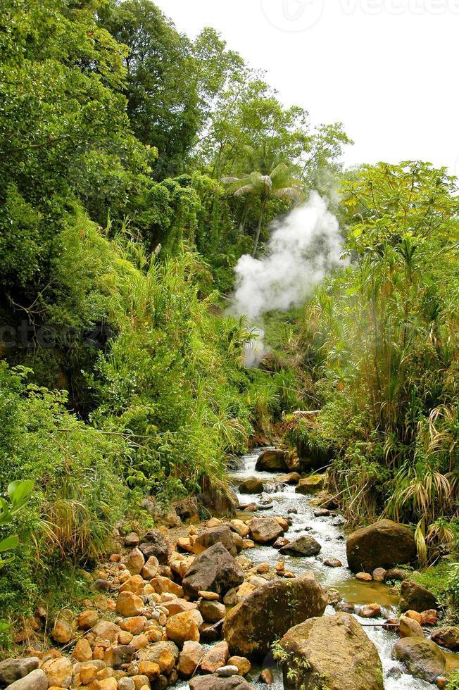 dominica - fonte termal natural foto