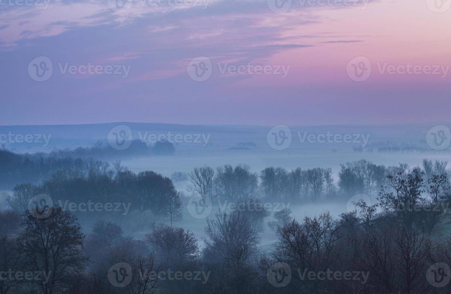 névoa da primavera foto