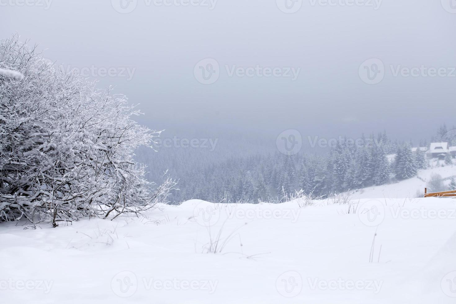 paisagem fantástica de inverno foto