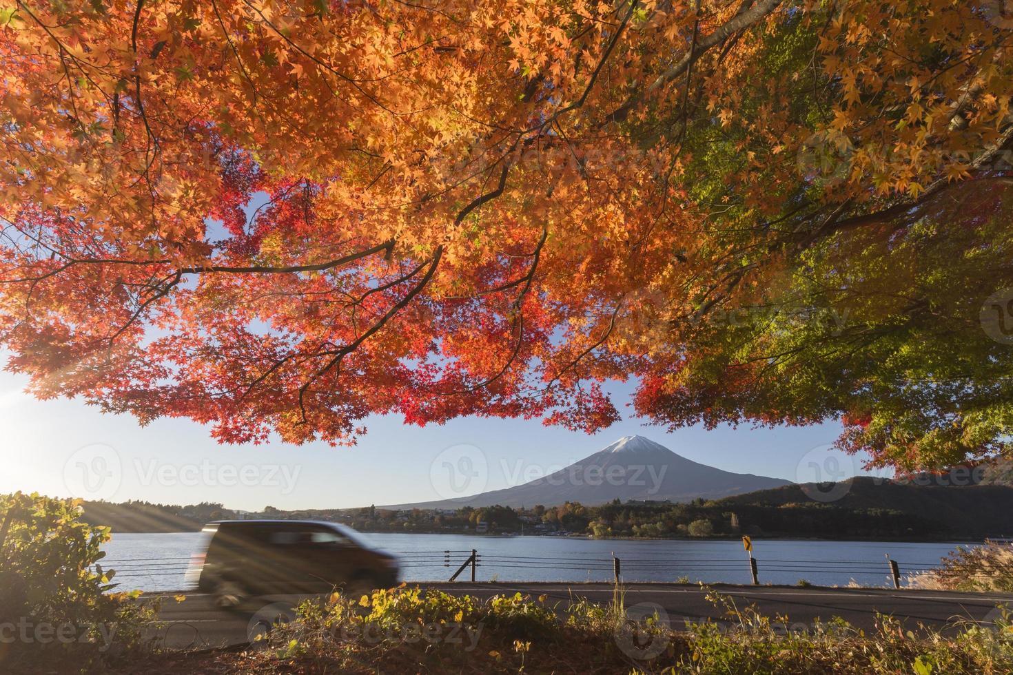 folhas de bordo mudam para a cor do outono em mt.fuji, japão foto