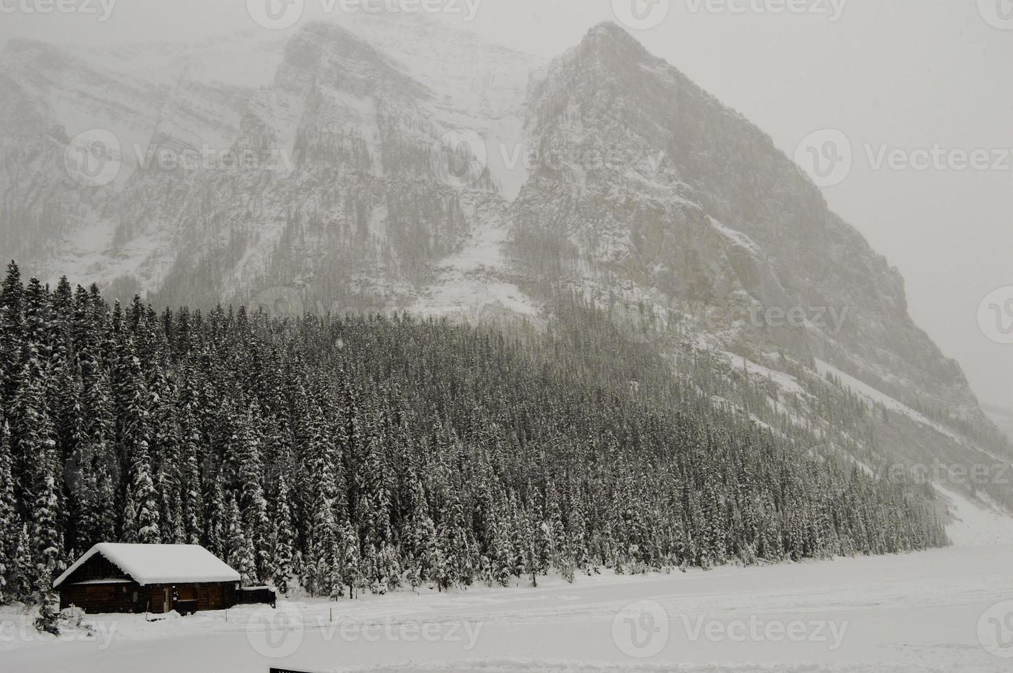 louise lago nevado foto