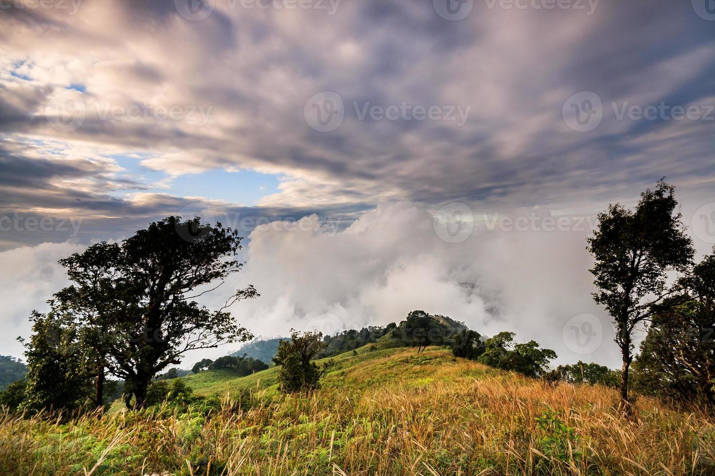 floresta de montanha e chovendo nevoeiro céu azul foto