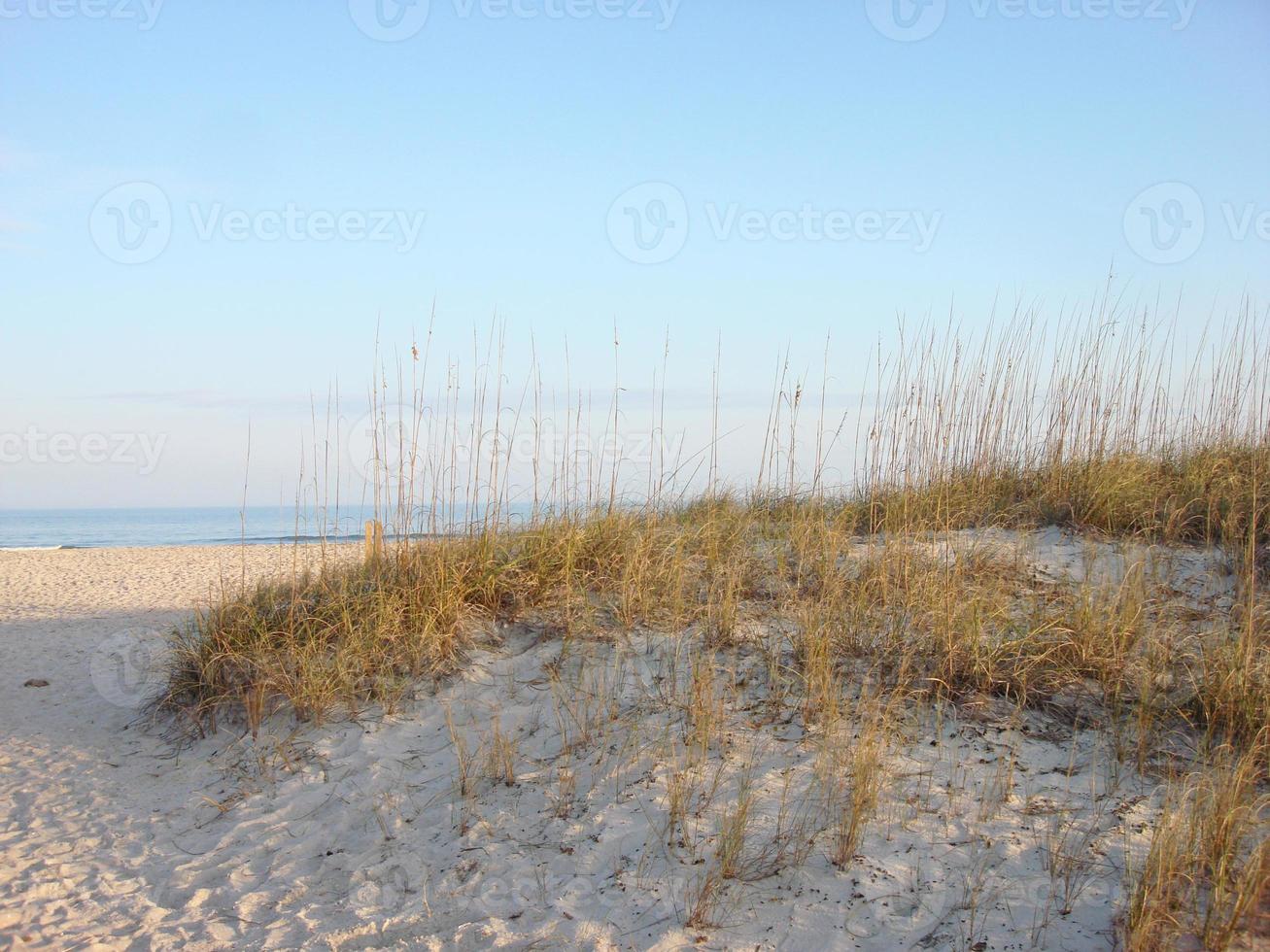praia de ponte vedra, flórida (jacksonville) foto
