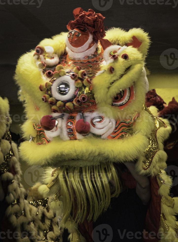 leão chinês foto