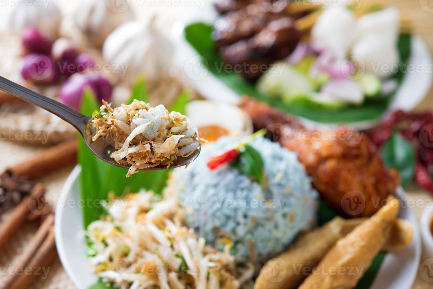 comida da malásia foto