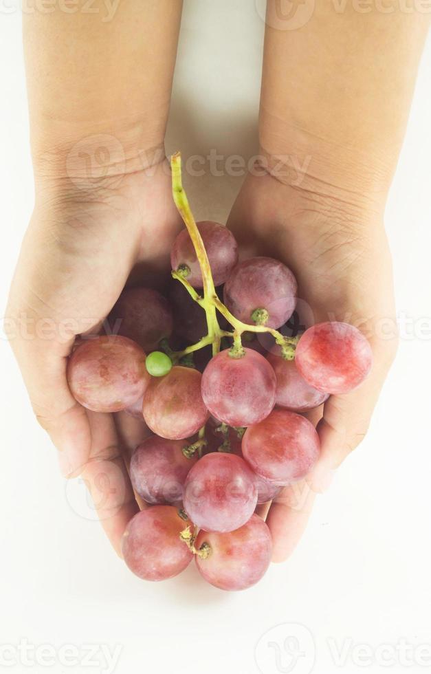 mão segure uva vermelha foto