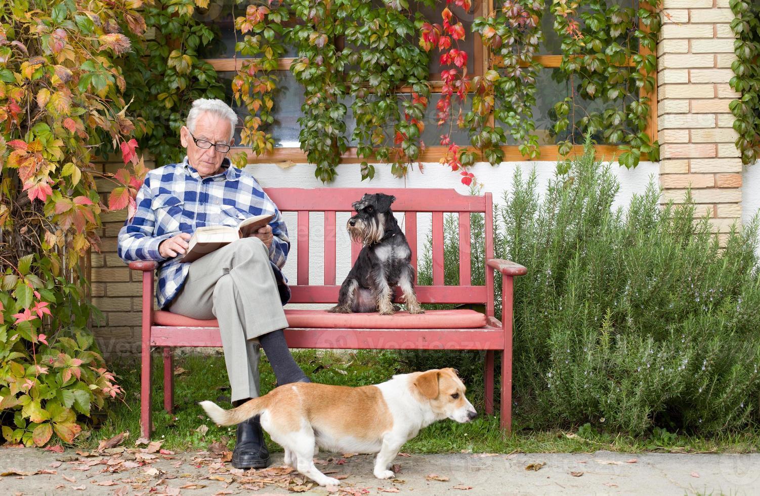 homem sênior com livro e cães foto