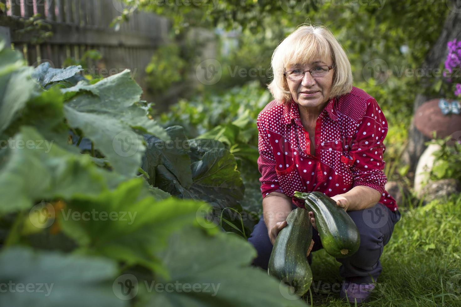 mulher com uma abobrinha em seu jardim. foto