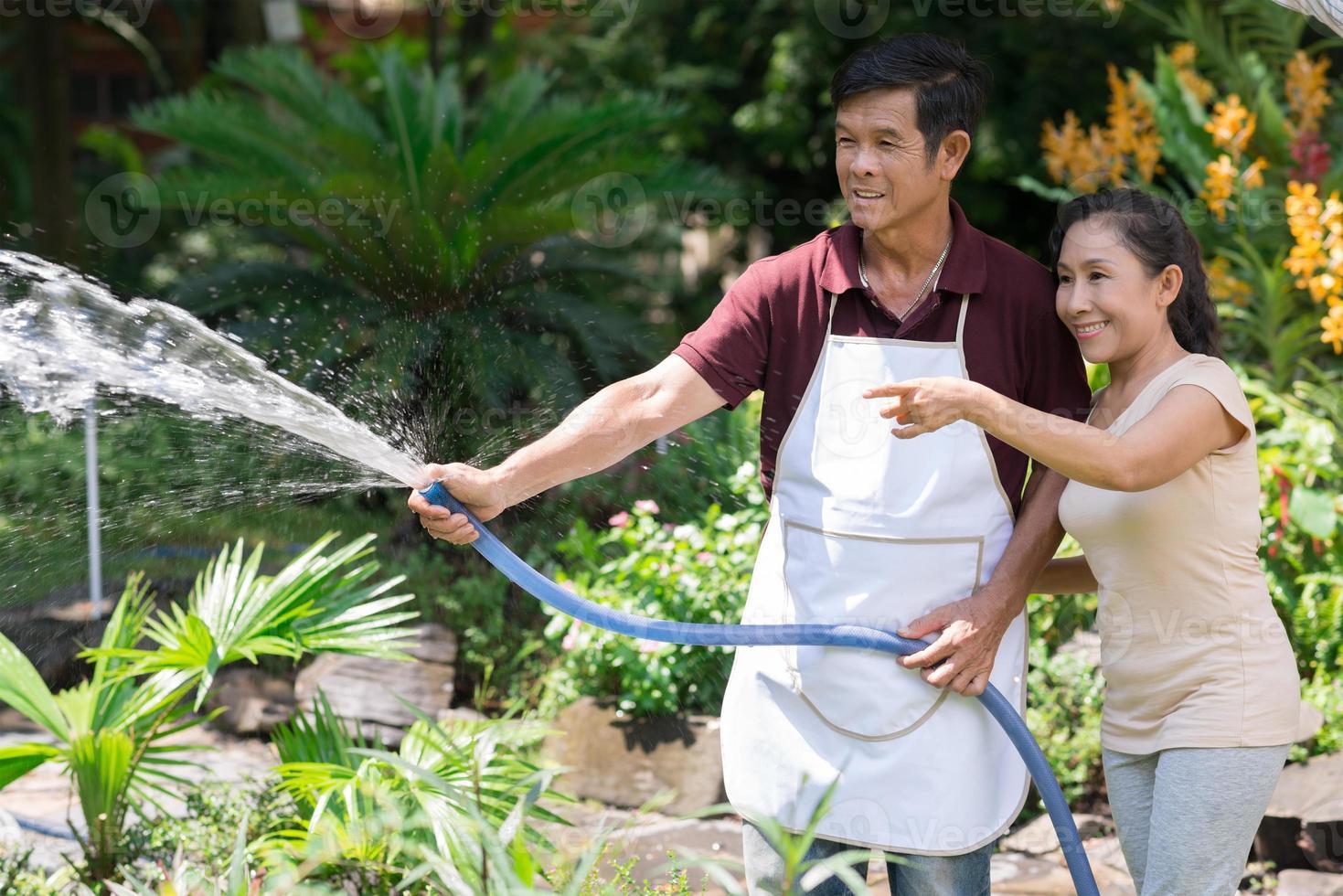 irrigação do jardim foto