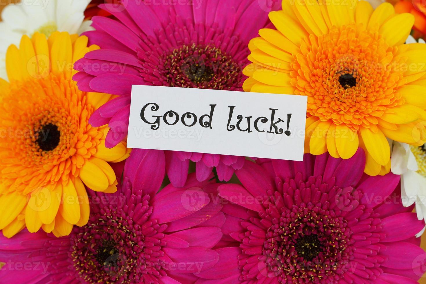 cartão de boa sorte com gerberas coloridas foto
