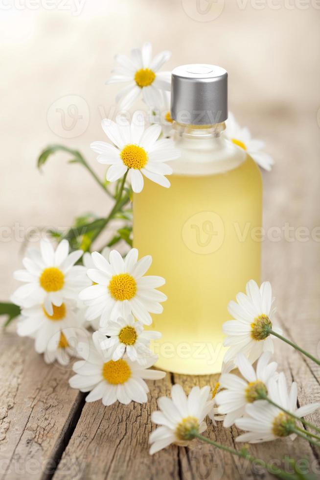 flores de óleo essencial e camomila foto