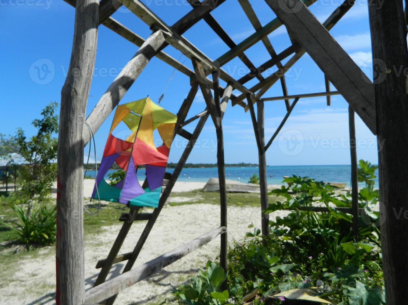 vida na ilha - jamaica foto