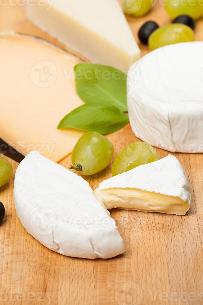 escolha de queijos. foto