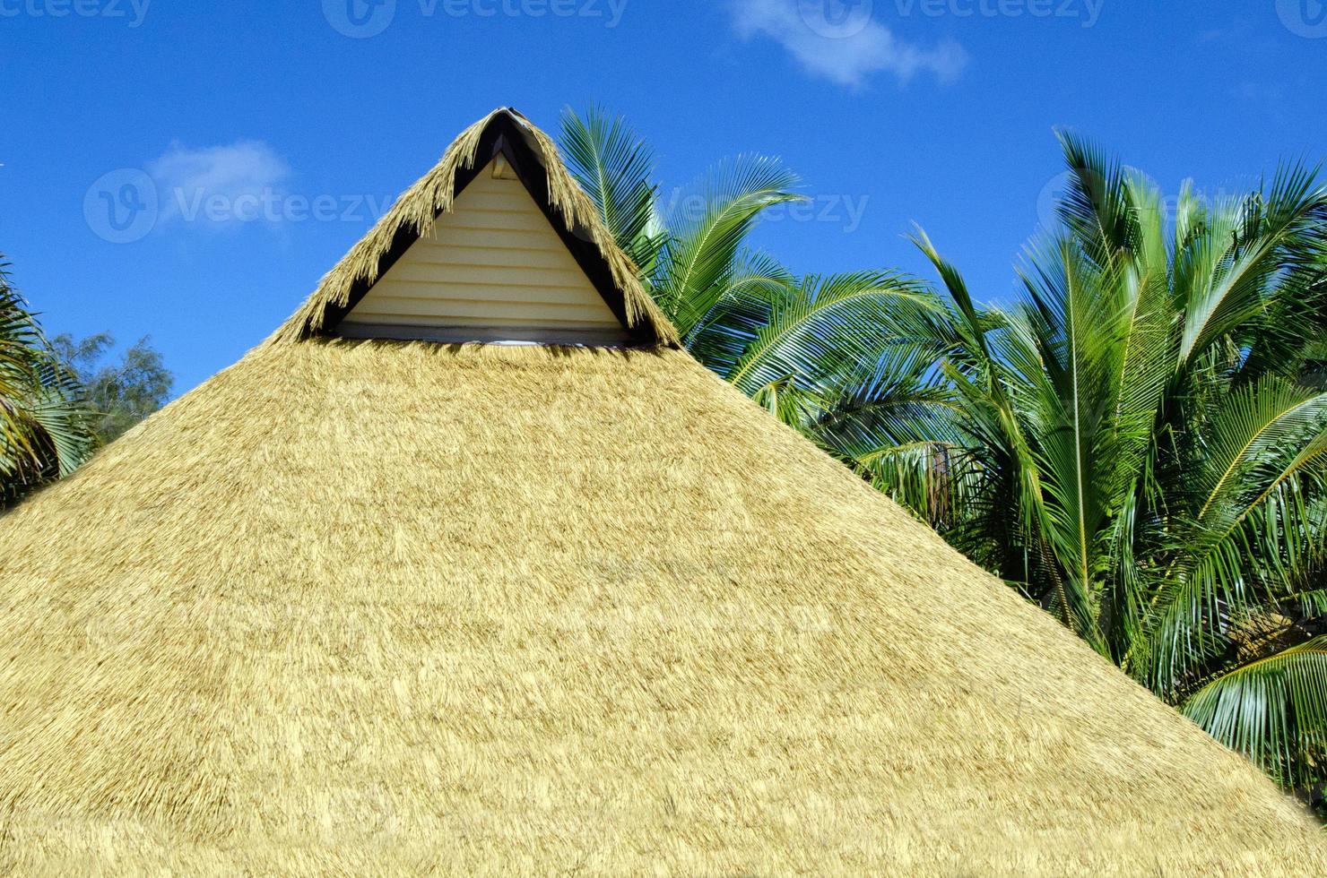 cabana da ilha do pacífico foto