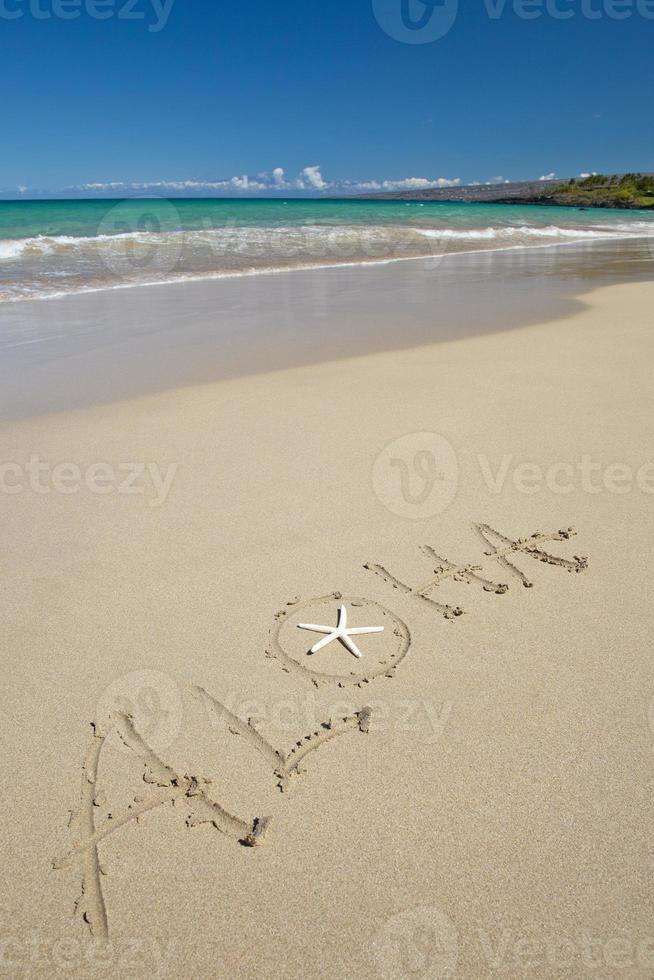 aloha e estrela do mar na praia tropical de areia branca foto