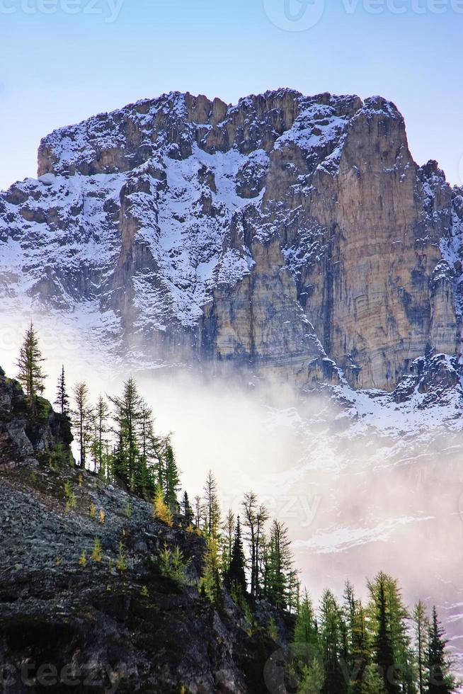 nuvens baixas, acima, pinheiros, lago o'hara, parque nacional yoho foto