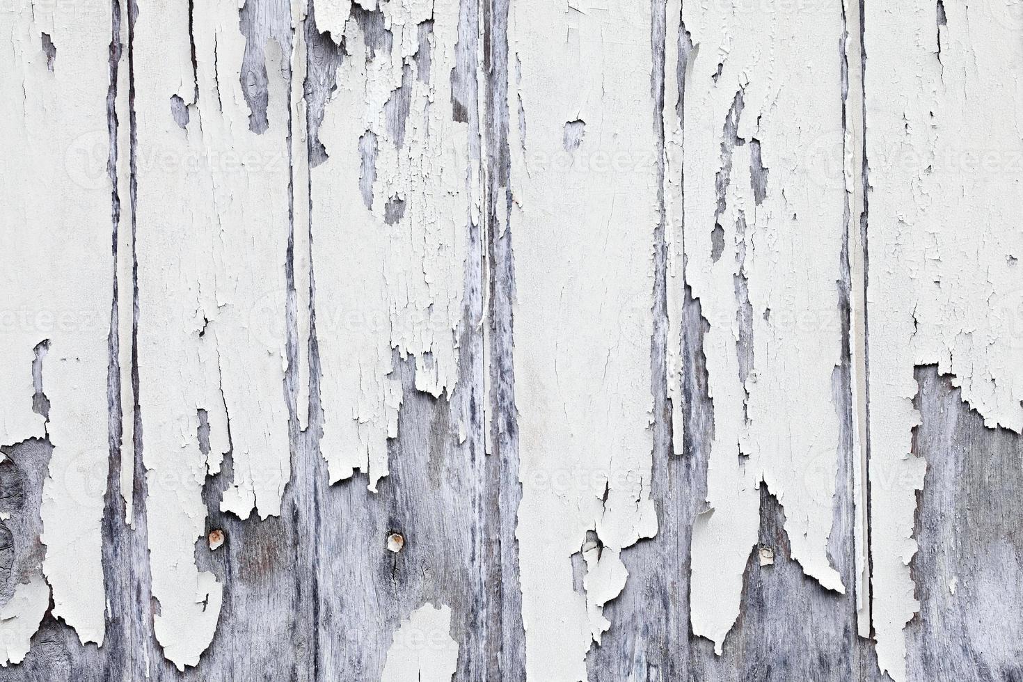 painel de madeira do grunge foto