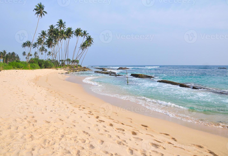 praia com areia branca e palmeiras foto