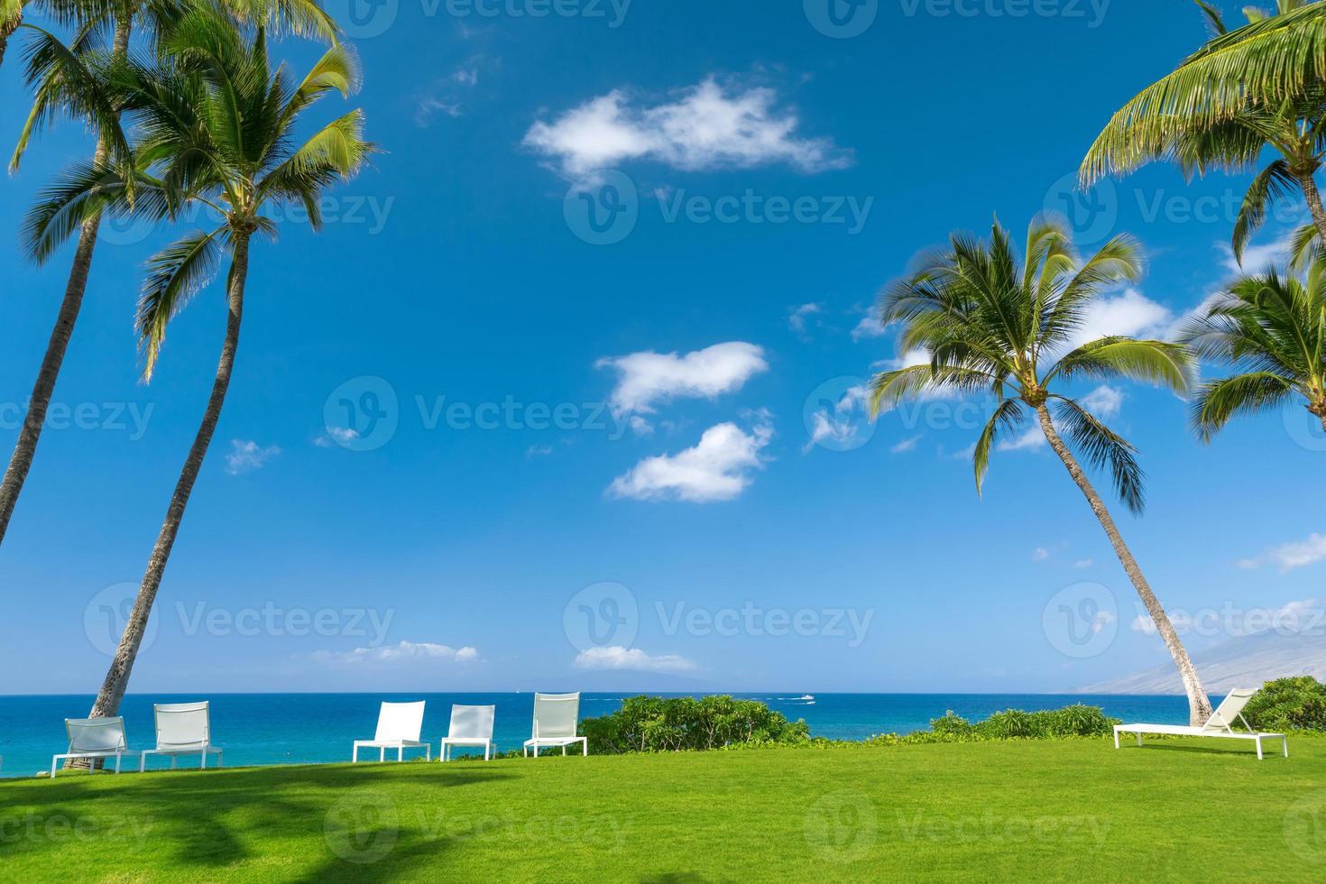 praia tropical foto
