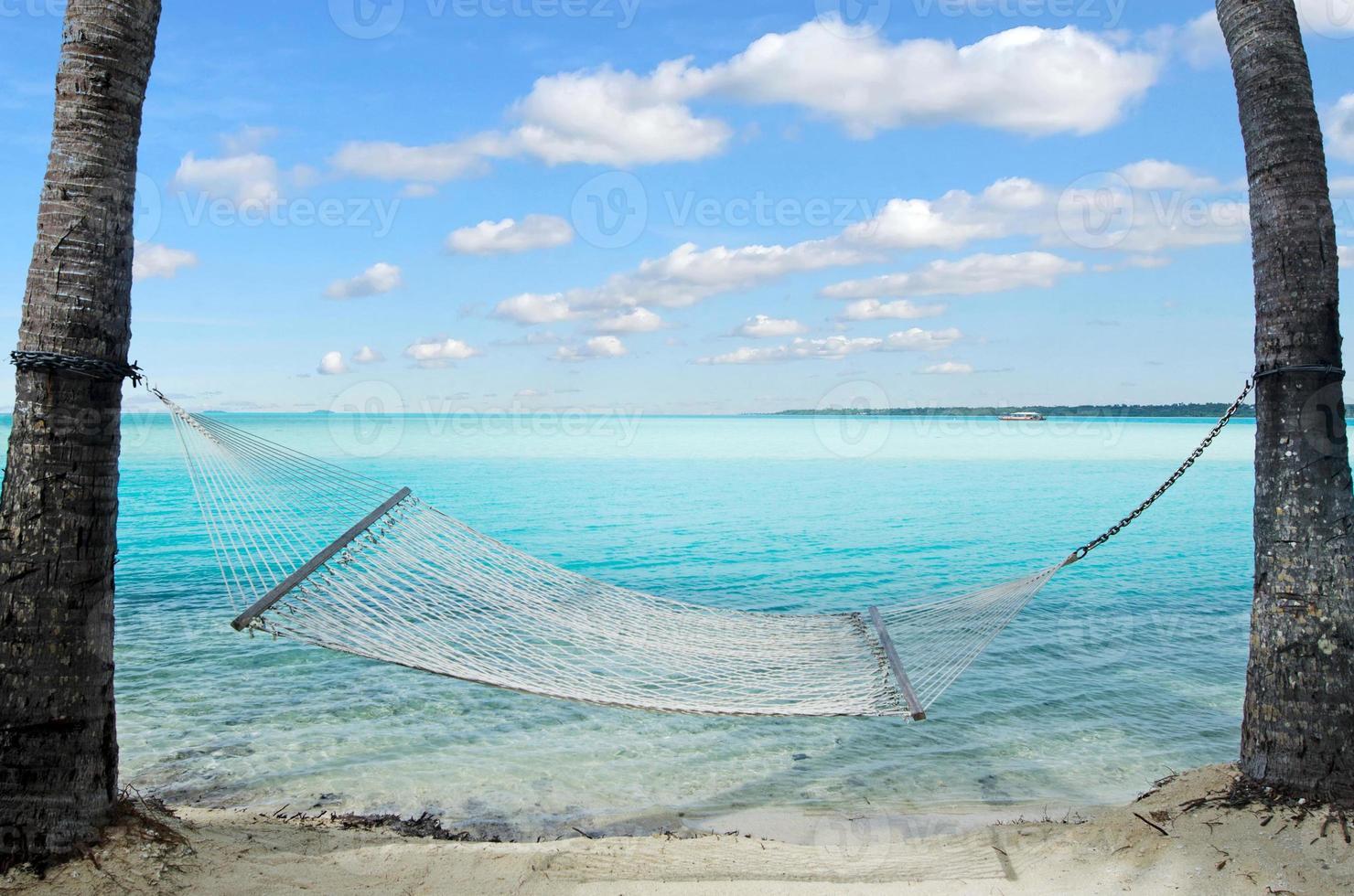 rede em coqueiros na ilha tropical foto