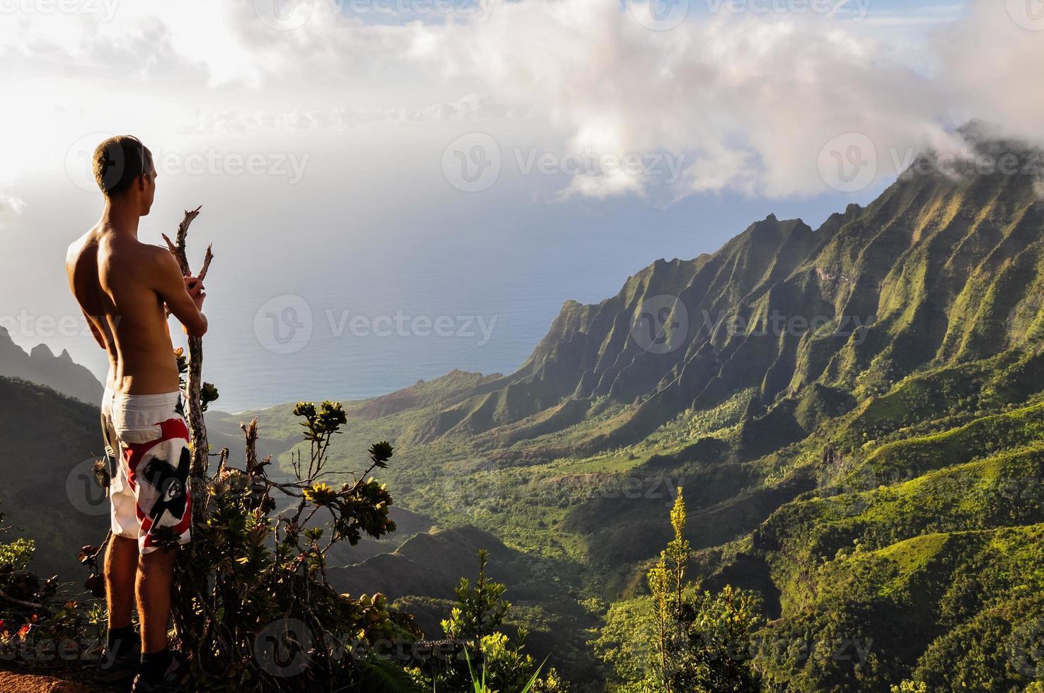homem olha sobre o vale do kalalau em kauai, Havaí na primavera foto